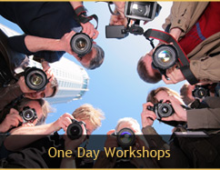 One Day Workshops